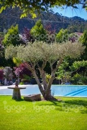 Hotel rural quinta da conchada booking